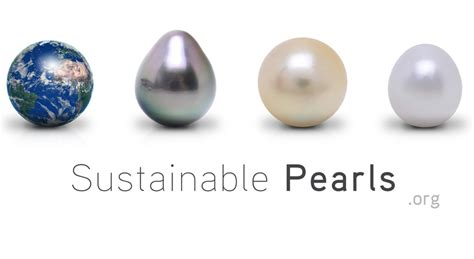 what is of pearl uses of pearls pearls sustainable pearls