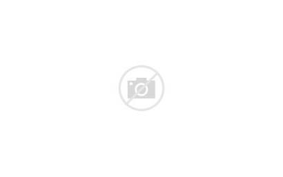 Winter Road Tree Lined Trees Way Horizon