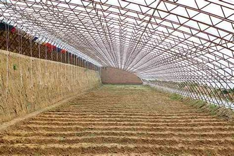chinese greenhouses for winter gardening organic gardening mother earth news