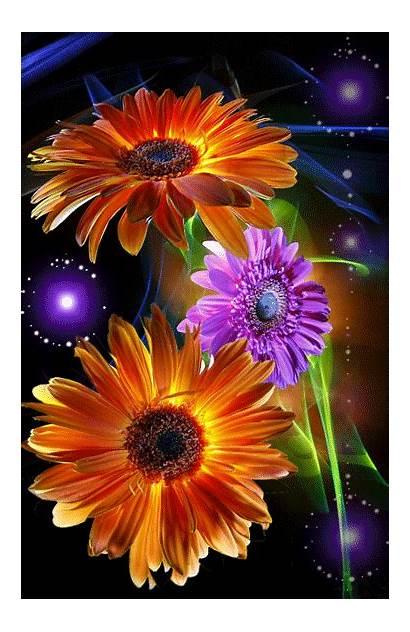 Flowers Animated Wallpapers Wallpapersafari