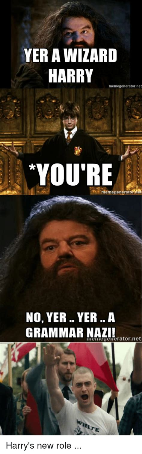 You Re A Wizard Harry Meme - you re a blizzard harry meme pictures to pin on pinterest pinsdaddy