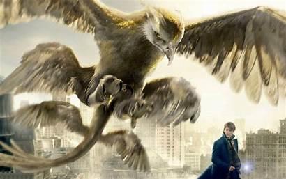 Beasts Fantastic Them Wallpapers Eagle Thunderbird Beast