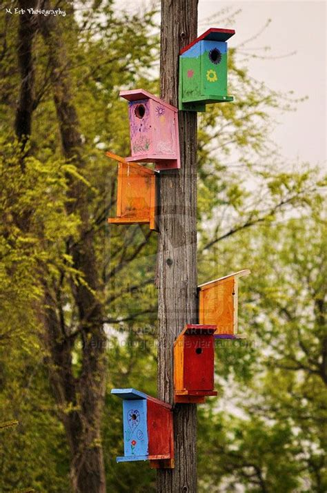 bird feeder poles lowes woodworking projects plans