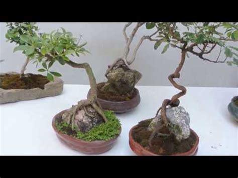 Como Hacer Un Jardin Con Piedras Facilisimocom