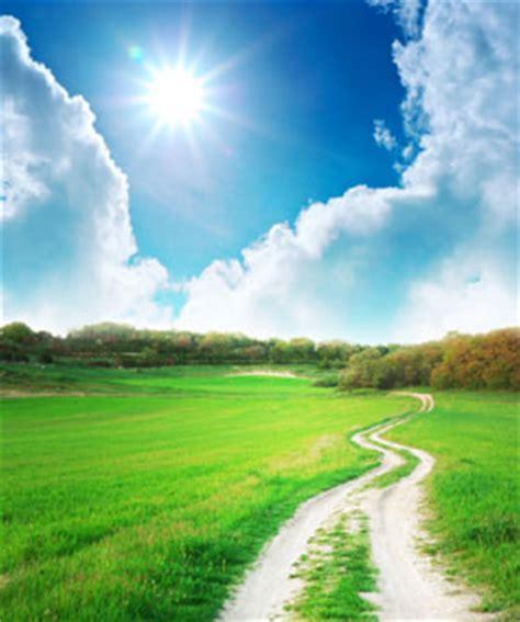 el camino  la felicidad