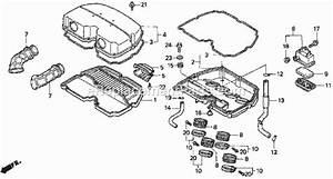 Wiring Diagram For 2004 Honda Cbr1000 Fuel Pump
