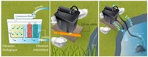 Filtration Biologique Pour Bassin A Poisson : installer un syst me de filtration dans un bassin bassin ~ Premium-room.com Idées de Décoration