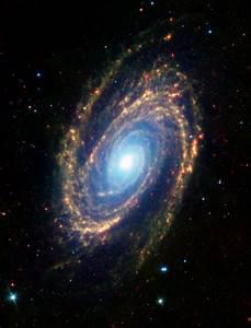 Immagine Agli Infrarossi Di M81 Presa Dal Telescopio
