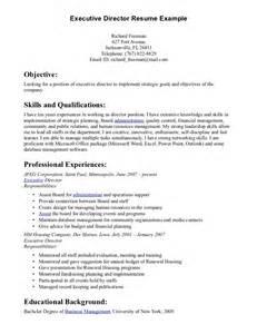 pdf sle resume company director