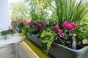 Hängepflanzen Für Balkonkästen : balkonk sten f r den herbst velanga ~ Michelbontemps.com Haus und Dekorationen
