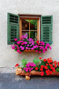 flower boxes for windows 40 Window and Balcony Flower Box Ideas (PHOTOS) - Home Stratosphere