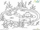 Pond Coloring Animals Worksheet Preschool Worksheets Clipart Frog Frogs Education Garden Google Habitat Kindergarten Sheets Crafts Preschoolers Dibujos Printable Spring sketch template