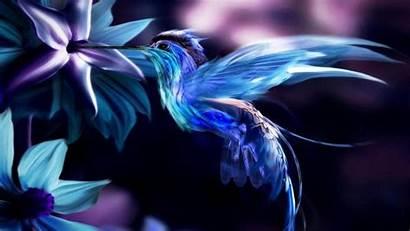Bird Desktop Wallpapers Hq Wallpapersafari
