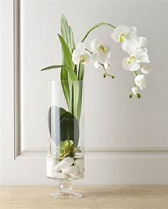 Best 25 Orchids In Water Ideas On Pinterest