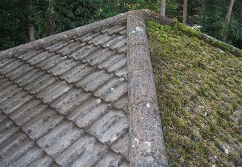 High Qualified Roof Repair Experts