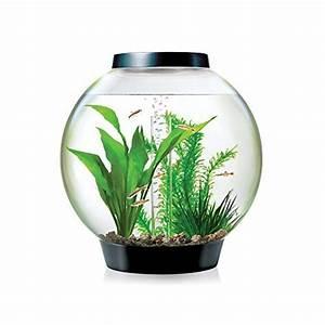Transportbox Für Fische : baby biorb kugel aquarium 15 l schwarz design komplett ~ Michelbontemps.com Haus und Dekorationen