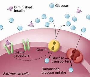Лечение диабета сахарного типы