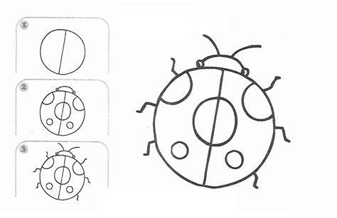 learn draw cartoon ladybug pagefree printable kids