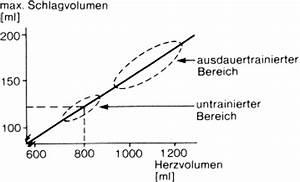 Blutvolumen Berechnen : herzleistungen ~ Themetempest.com Abrechnung