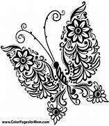 Detailed Butterfly Col...