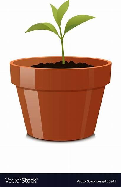 Pot Sprout Vector Royalty Plant Vectorstock