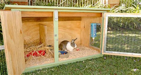diy rabbit hutch building   rabbit hutch