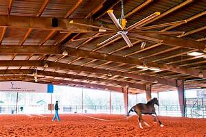 Large Ceiling Fans for Stables, Riding Arenas & Horse ...
