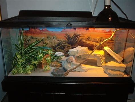 bearded dragon heat l wattage 60 gallon reptile tank