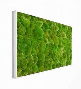 Vertikaler Garten Kaufen : kugelmoosbild 100 x 60 cm im greenbop online shop kaufen in 2020 mooswand island moos und moos ~ Watch28wear.com Haus und Dekorationen