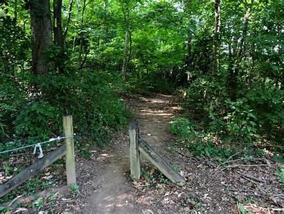Park Trail Running Melton Hill