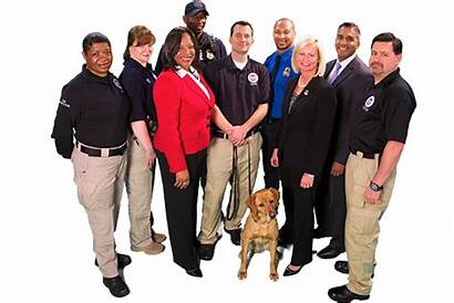Employees Tsa Security Employee Resources Transportation Administration