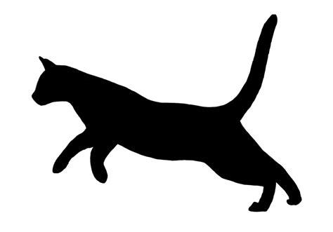 Cat Running 1 By Rangerdoe On Deviantart