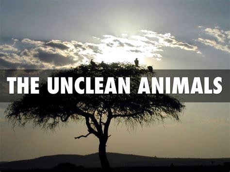 unclean animals clean