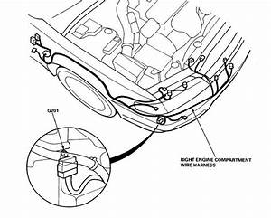 Right Engine Compartment Wire Harness