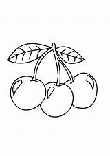 Cherries Coloring Pages Three Cherry Printable A4 Categories Fruits Coloringonly Copy sketch template