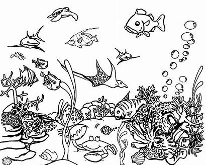 Ocean Coloring Pages Scene Printable