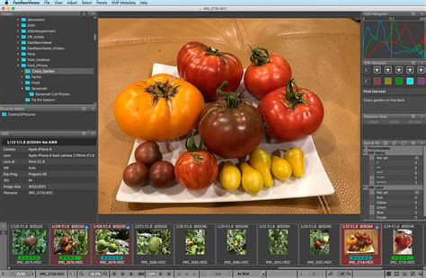 Heic is the container or file extension that holds heif images or sequences of images. HEIC / HEIF Viewer for Mac OS X and Windows | FastRawViewer