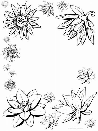 Flower Lotus Drawing Flowers Designs Tattoo Drawings