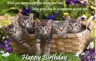 happy birthday with cats cat birthday quotes quotesgram