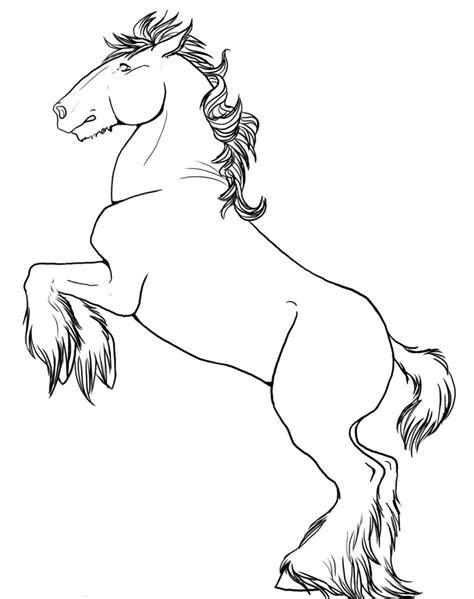 Horses Rearing Up Drawing