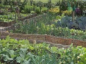 1000 idees sur le theme bambou clotures sur pinterest With decoration jardin avec pierres 3 clatures de jardin en 59 idees captivantes