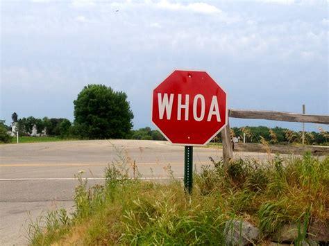 Whoa Stop Sign Explore Lynn Friedmans Photos On Flickr