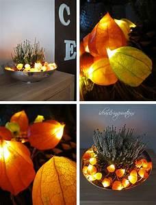 Pinterest Herbst Basteln : licht physalis lampignon tisch dekoration diy herbst fall pinterest autumn home fall ~ Orissabook.com Haus und Dekorationen
