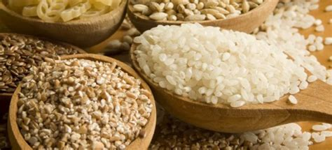 cuisiner riz cuisson des riz et céréales