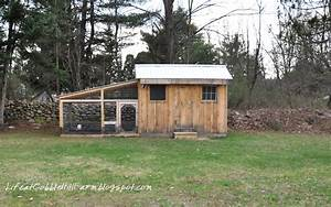 Chicken Coop 101  Thirteen Lessons Learned