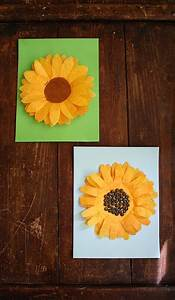 coffee filter sunflower family crafts
