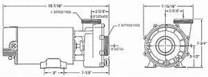 Aquaflo Gecko Alliance Xp2e Pump 2 0hp 240v  2spd  56fr