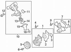 2016 Ford Transit-250 Engine Water Pump Gasket