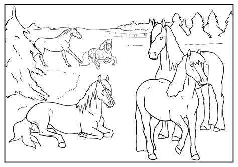 200 x 267 jpg pixel. 15 Kleurplaten Paarden Manege | Krijg duizenden ...