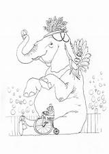 Coloring Pages Circus Elephant Carnival Printable Hilary Illustrations Waldo Knight sketch template